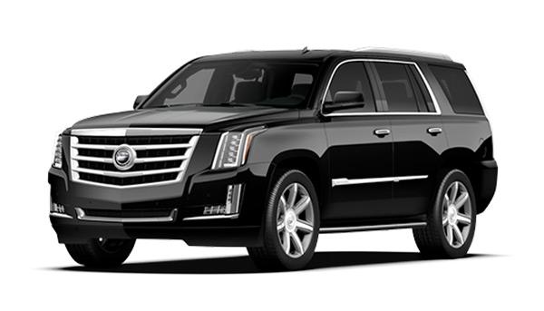 حدس و گمانه زنی قیمتی برای خودروهای جدید نمایشگاه مشهد